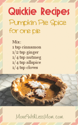 Quickie Recipes - Pumpkin Pie Spice for One Pie: 1 tsp cinnamon, 1/2 tsp ginger, 1/4 tsp nutmeg, 1/4 tsp allspice, 1/4 tsp cloves