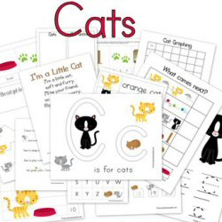 Cat worksheets