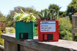 DIY Floppy Disk Planters from Brit & Co