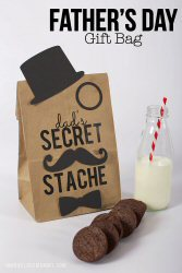 Father's Day Gift Bag Dads Secret Stache (Free Printable)