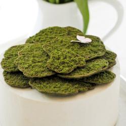 Edible Moss Cake