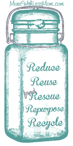 Rs of Waste Heirarchy: Reduce - Reuse - (food) Rescue - Repurpose - Recycle from The More With Less Mom
