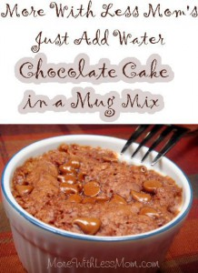 Linda Loo's Just Add Water Chocolate Cake in a Mug Mix Recipe