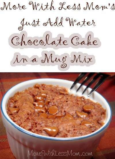 Linda Loo's Just Add Water Chocolate Mug Cake Mix Recipe from More With Less Mom