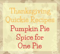 Pumpkin Pie Spice for One Pie Recipe